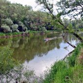 Widok na rzekę Bug